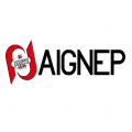 Aignep pneumatic components